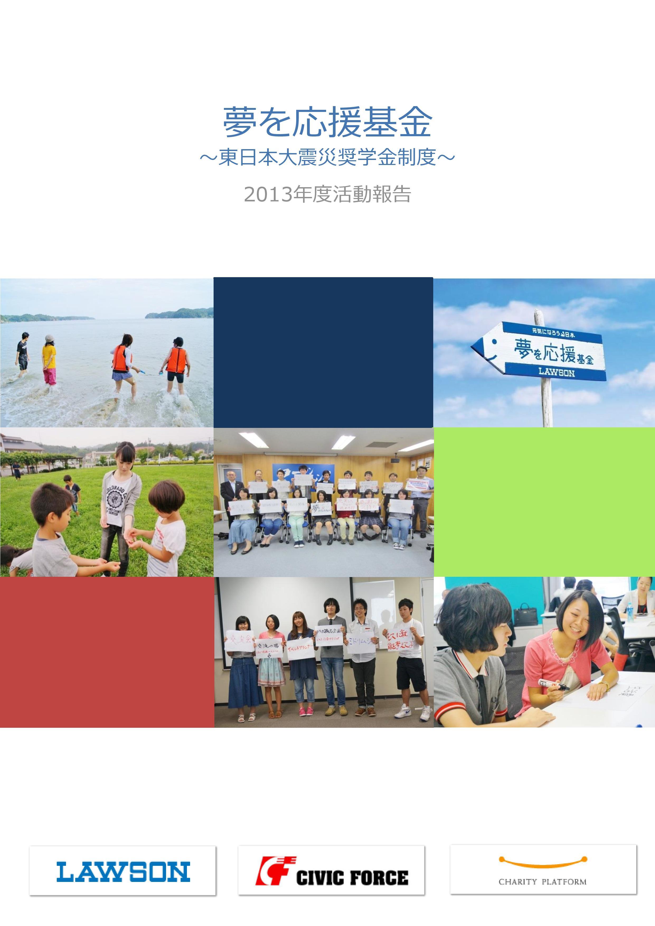 2013年度活動報告(案)-page-001.jpg