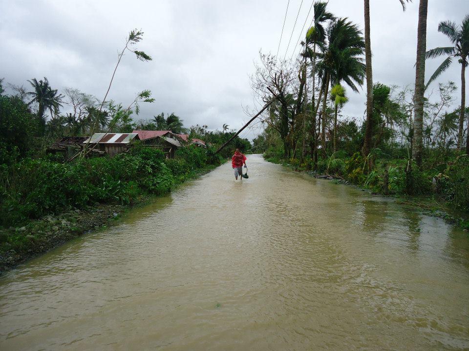 philippine3.jpg